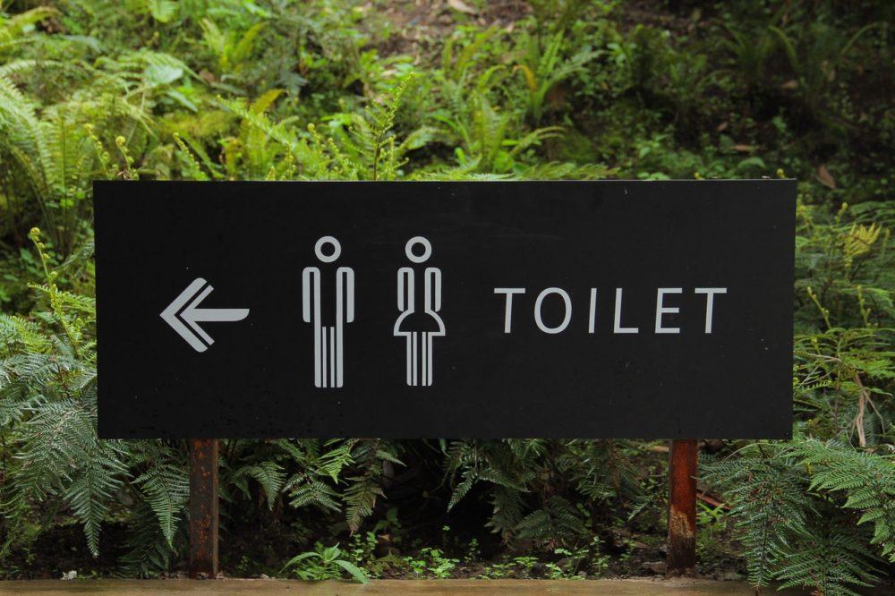 bathroom directions fern